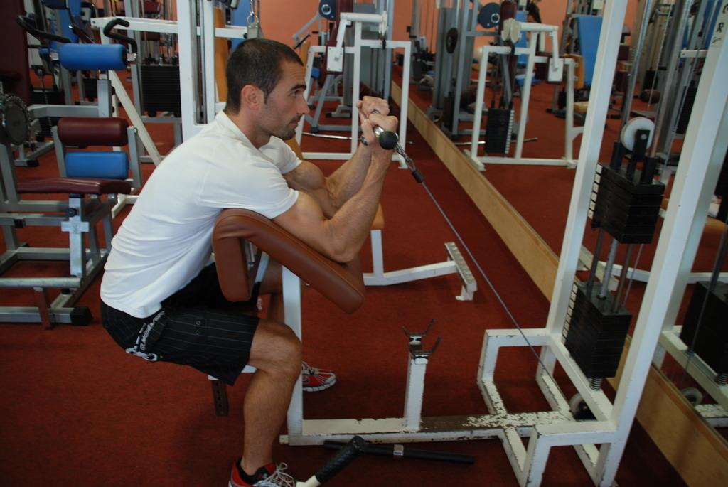 ČLANEK: Kaj je musklfiber in kako nastane? 3