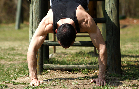 ramena prsne mišice