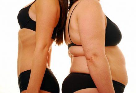 """""""Low carb vs. low fat"""" oz. Zakaj povečan vnos ogljikovih hidratov slabo vpliva na nabiranje odvečne maščobe in obratno?"""