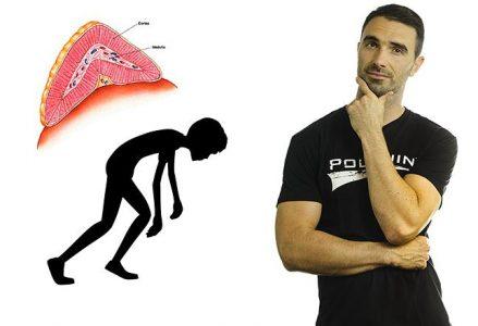 Ste že kdaj pomislili na adrenalno izčrpanost?