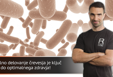 VitjaČlanek1.png